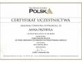 Anna Przybyla, okluzja 5